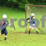 Little lacrosse1 150