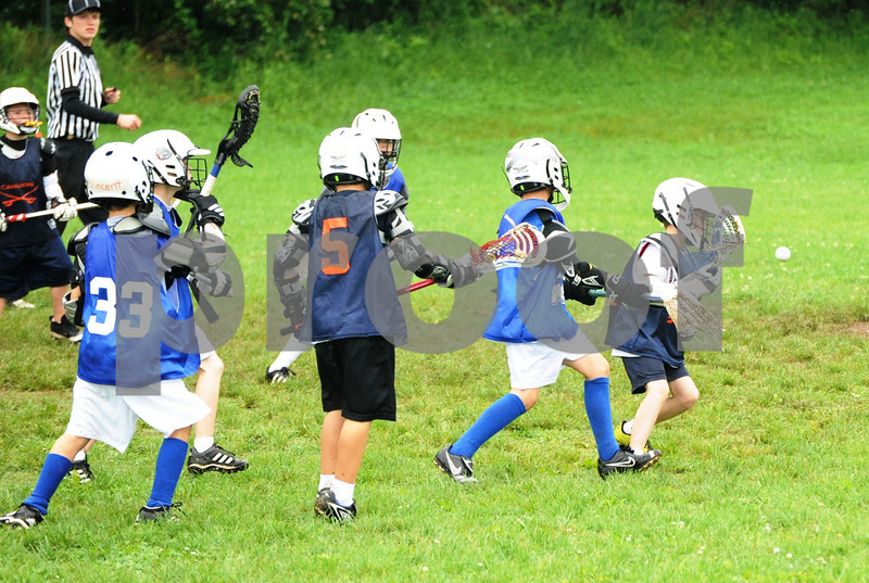 Little lacrosse1 241