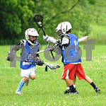 Little lacrosse1 219