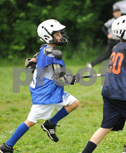 Little lacrosse1 100