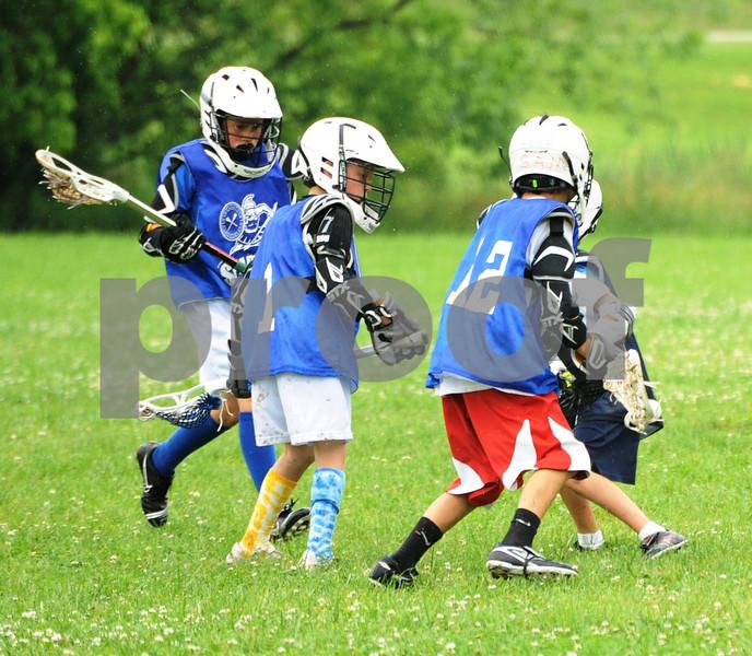 Little lacrosse1 220
