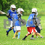 Little lacrosse1 220