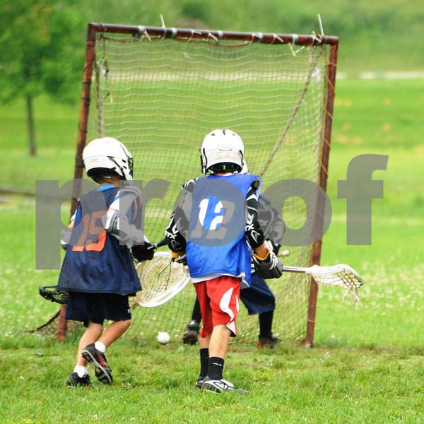 Little lacrosse1 202