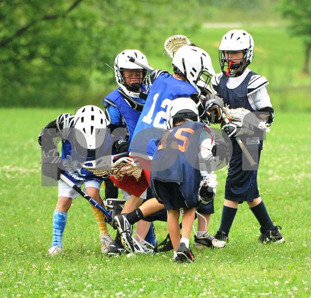 Little lacrosse1 224