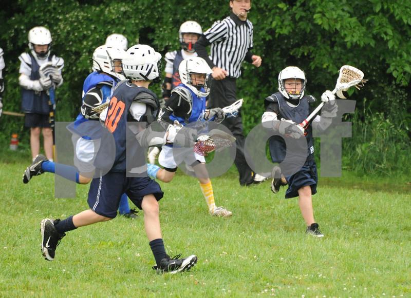 Little lacrosse1 141