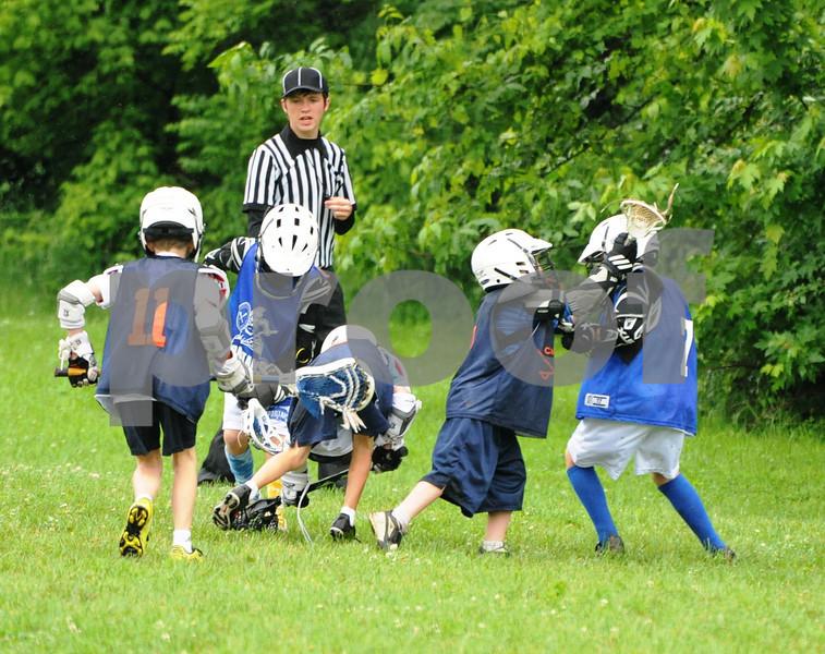 Little lacrosse1 169