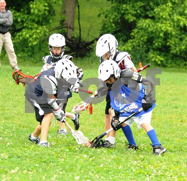 Little lacrosse1 113