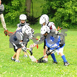 Little lacrosse1 113