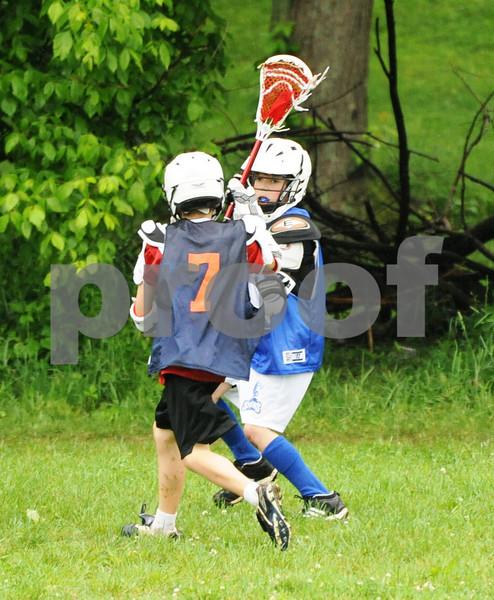 Little lacrosse1 134