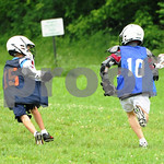 Little lacrosse1 193