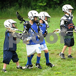 Little lacrosse1 235