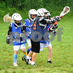 Little lacrosse1 240