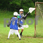 Little lacrosse1 117