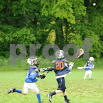 Little lacrosse1 102