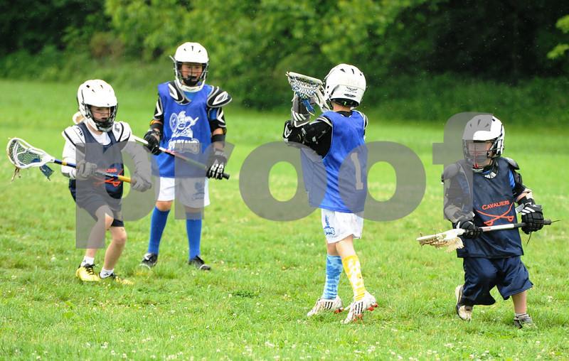 Little lacrosse1 179