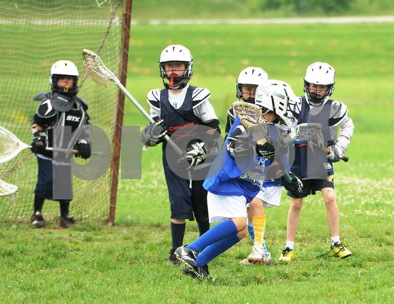 Little lacrosse1 200