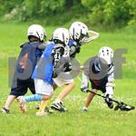 Little lacrosse1 167