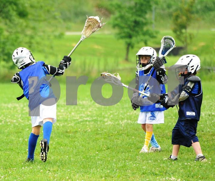 Little lacrosse1 208