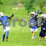 Little lacrosse1 208