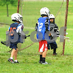 Little lacrosse1 201
