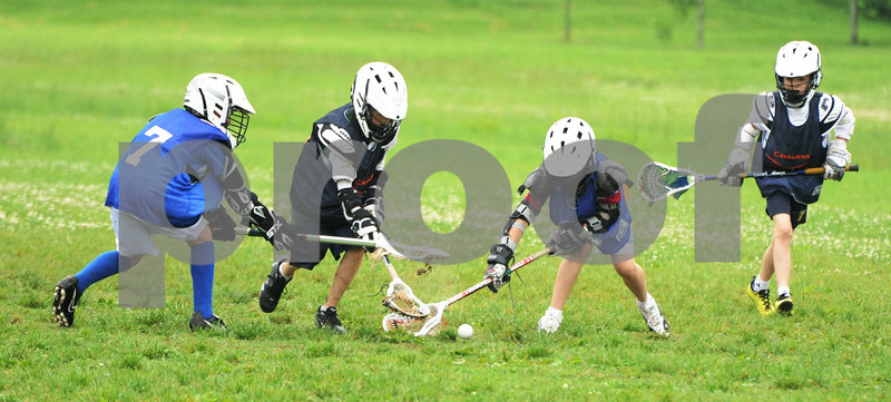 Little lacrosse1 211