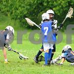 Little lacrosse1 180