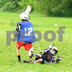 Little lacrosse1 178