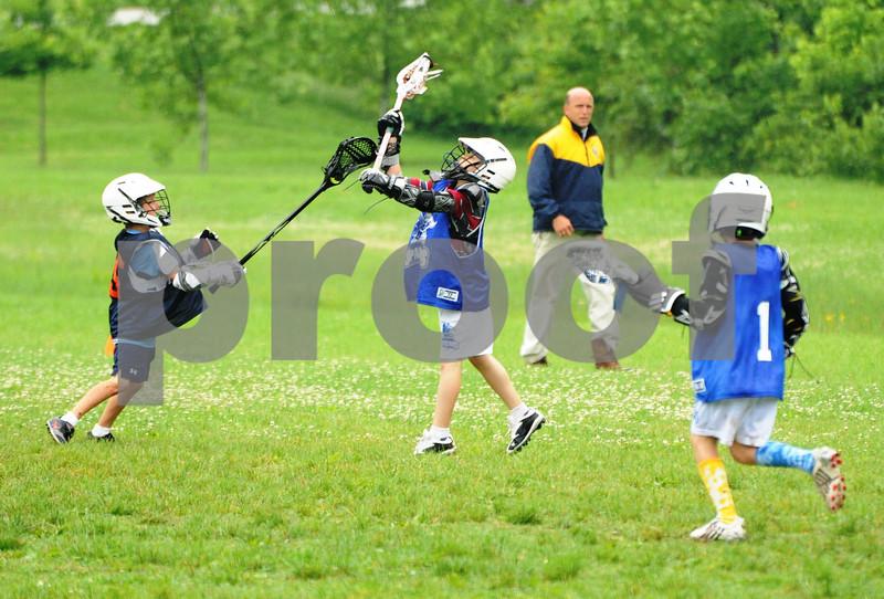 Little lacrosse1 194