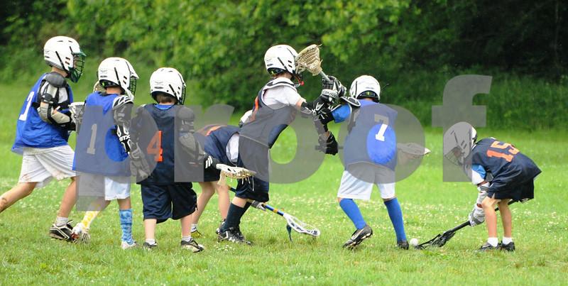 Little lacrosse1 182
