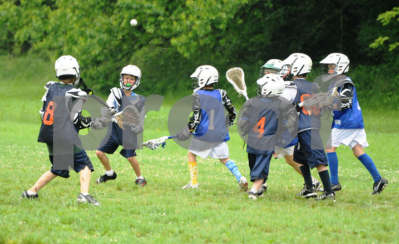 Little lacrosse1 184
