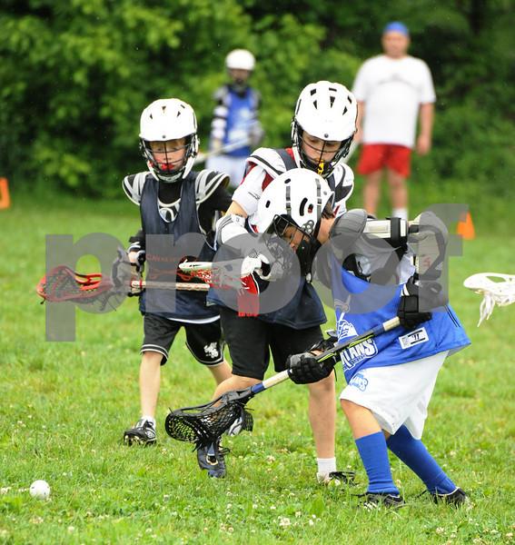 Little lacrosse1 112