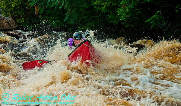 Turbulence engulfs intrepid whitewater solo canoeist Charles Frisk within the middle part of Big Smokey Falls at a river flow of 744 CFS on the wild Wolf River Section 4 within Menominee Indian Nation or Menominee County (USA WI Keshena)