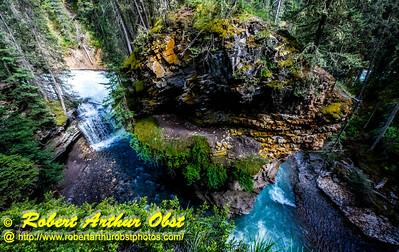 DB-Obst_7798_ATO.WestUSACanada2014-CAN.AB.Banff.BanffNP. JohnstonCanyon.TortuousVerdure-B (DSC_7798.NEF)