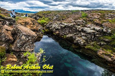 Obst FAV Photos 2015 Nikon D810 Daily Best Obst Image 0441