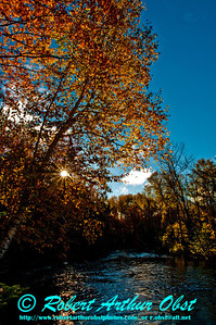 Gorgeous autumn foliage and sparkling waters by the Wolf River near the Wolf River Refuge (USA WI White Lake)