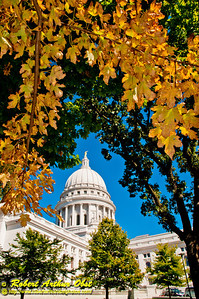 Autumn oaks and clear blue skies frame the State of Wisconsin Capitol in its resplendent glory (USA WI Madison; RAO 2012 Nikon D300s Image 3506)