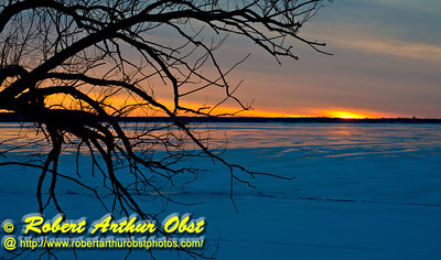 Cross country skier's and hiker's winter view from the Woodland Trail of oak trees framing a crimson sunrise over  a frozen shining Lake Mendota  within Governor Nelson State Park (USA WI Waunakee; Obst FAV Photos 2013 Nikon D800 Daily Best Obst Image 7473)