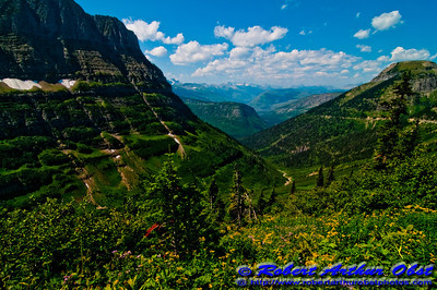 Hiker's view from Highline Trail of the verdure valley between Mt. Oberlin and Mt. Gould in Glacier National Park (USA MT West Glacier)