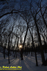 Cross country skier's gorgeous view of afternoon winter sun over deep hardwood forests within Indian Lake County Park (USA WI Cross Plains; Obst FAV 2013 Daily Best Obst Image 7821)