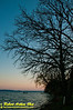 Golfer's and boater's and walker's or jogger's view of oaks towering over Lake Mendota at sunset by Bishops Bay Country Club (USA WI Middleton; RAO 2012 Nikon D300s Image 4332)
