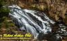 DB-Obst_1150_LI-Waterfalls.USA.WY.YellowstoneNationalPark.GibbonRiver.GibbonFalls-B  (DSC_1150.NEF)