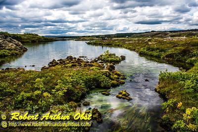 Obst FAV Photos 2015 Nikon D810 Daily Best Obst Image 0418