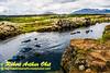 Obst FAV Photos 2015 Nikon D810 Daily Best Obst Image 0401