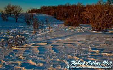 Cross country skier's view from the Woodland Trail of the late afternoon sun highlighting wind rippled snow fields and a radiant oak forest within Governor Nelson State Park (USA WI Waunakee; Obst FAV Photos 2013 Nikon D800 Daily Best Obst Image 8346)