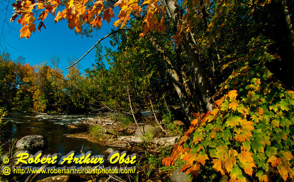 Hikers enjoy views of blazing autumn colors and blue skies near the start of the second major pitch of Boy Scouts Rapids on the wild Wolf River at the Gardner Dam Scout Camp within northeastern Wisconsin (USA WI White Lake)