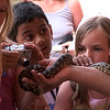 kids with snake
