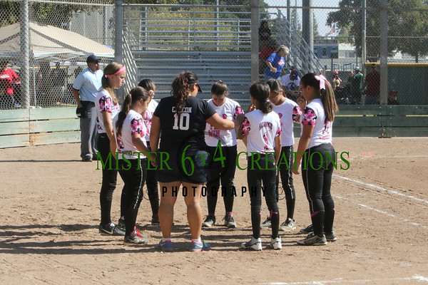 Alliance Softball