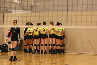 Alliance Volleyball 1-17-15