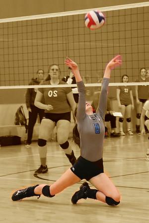 Alliance Volleyball 2-14-15
