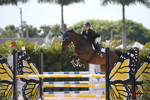 10/02/2021 ; Wellington FL ; Winter Equestrian Festival - Week 5